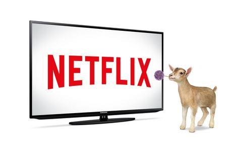 TELUS Optik TV™ - Netflix TELUS